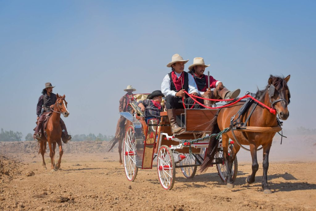 Ride on a horse-drawn carriage