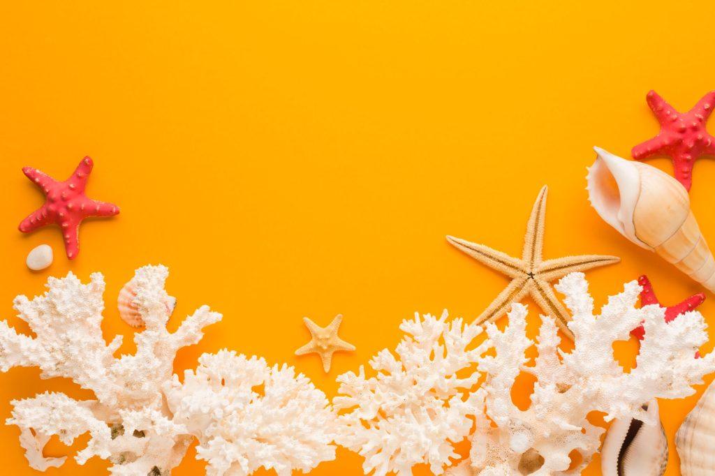 Coral is a unique small decor items